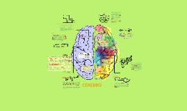 Unidad 14_ Neurociencia