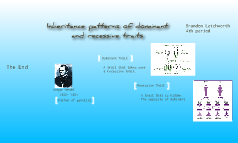Inheritance patterns for dominant and recessive traits
