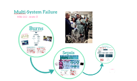 Multi-System Failure