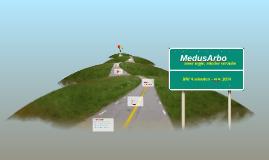 MedusArbo BNI 4 minuten - nov 2014