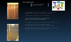 Soil Compasion  Lab