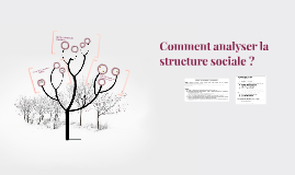 Comment analyser la structure sociale ?