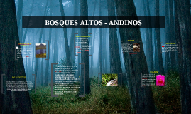 Copy of BOSQUES ALTOS - ANDINOS