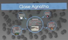 Clase Agnatha