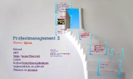 Projectmanagement 2