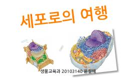 Copy of 세포로의 여행
