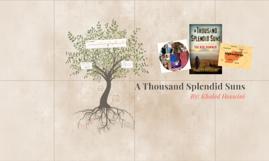 thesis on a thousand splendid suns Essays, analysis, and criticism on khaled hosseini's a thousand splendid suns - essays.