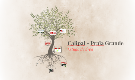 Calipal