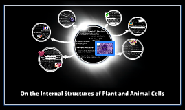 On the Internal Structures of Plant and Animal Cells