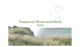 Copy of The Biomes- Temperate Grassland/Shrubland