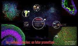 Les Cellules souches: un futur prometant ...