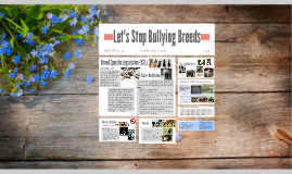 Let's Stop Bullying Breeds