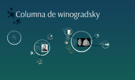 Copy of Columna de winogradsky