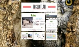 TECOLOTLÁN