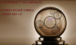 Copy of LA SEGURIDAD EN INTERNET