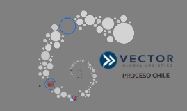 VECTOR GLOBAL LOGISTICS
