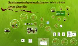 Seminararbeitspräsentation am 16.02.14 von Jonas Grandke
