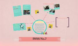 IMSS No.7