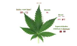 1º Curso de Cannabis Medicinal