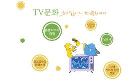 4강 TV문화