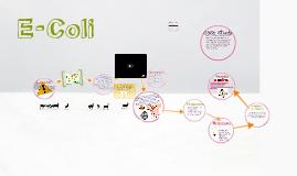 E-coli Presentation