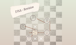 DNA - Revision