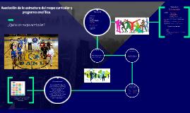 Elementos y componentes del programa analítico.