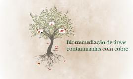 Biorremediação de áreas contaminadas com cobre