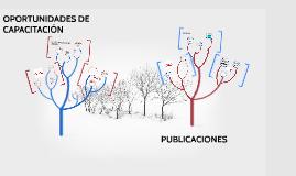 Copy of OPORTUNIDADES DE CAPACITACION