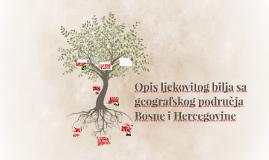 Opis ljekovitog bilja sa geografskog područja Bosne I Herceg