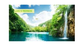 LOS 5 REINOS