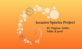 invasive speciese project
