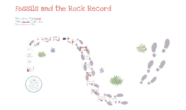 Fossils and the Rock Record