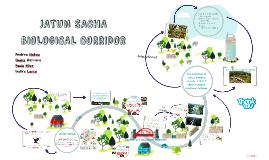 JATUN SACHA BIOLOGICAL CORRIDOR