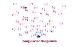 Coagulación Sanguinea