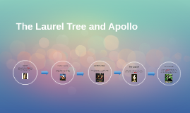 The Laurel Tree and Apollo