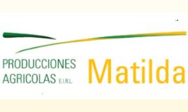 EXPORTADORA MATILDA