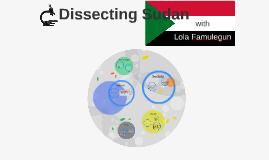 Dissecting Sudan