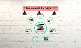 Classroom Ecosystem