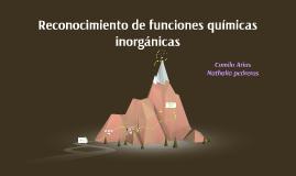 Copy of Reconocimiento de funciones quimicas Inorganicas