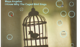 I Know Why The Caged Bird Sings Anaylsis