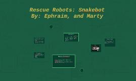 Rescue Robots