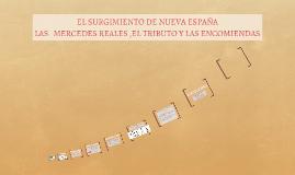 Copy of LAS   MERCEDES REALES ,EL TRIBUTO Y LAS ENCOMIENDAS