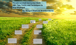 The Job Survival Instruction Book