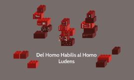 Del Homo Habilis al Homo Ludens
