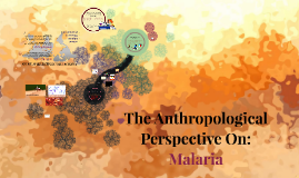 The Anthropological