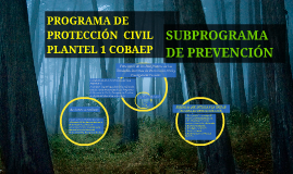 Copy of PROGRAMA DE PROTECCIÓN  CIVIL