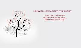 LIDERAZGO, COMUNICACION Y SUPERVISION