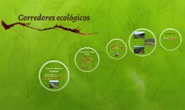 O que são corredores ecológicos?