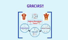 Cadenas Musculares: